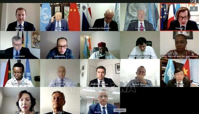 Le Vietnam à une réunion du Conseil de sécurité sur l'Afrique - ảnh 1