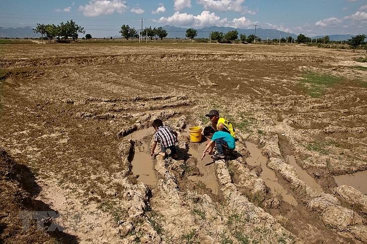 Changement climatique : la Banque mondiale soutient le Vietnam  - ảnh 1