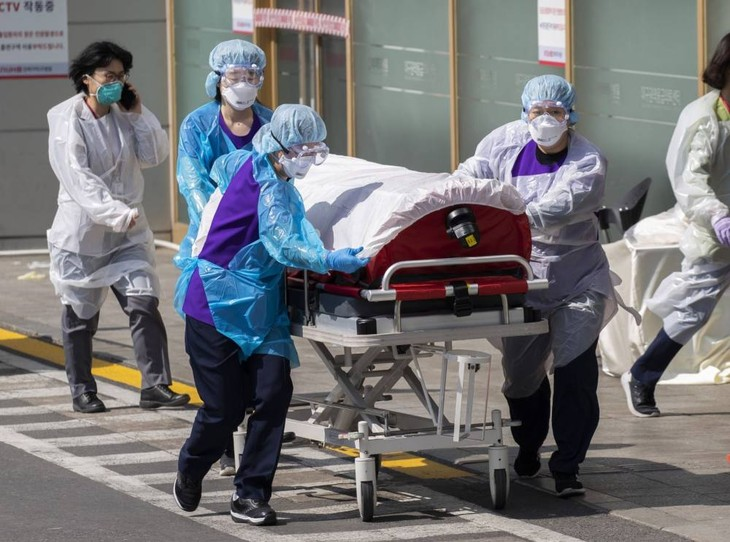 Coronavirus : Bilan quotidien du 2 juillet - ảnh 1