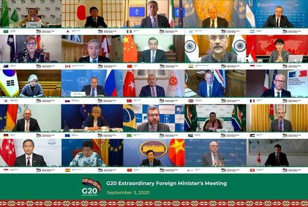COVID-19: les ministres du G20 favorable à une gestion transfrontalière coordonnée - ảnh 1
