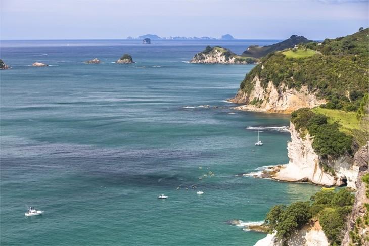 Nouvelle-Zélande : Alerte au tsunami dans tout le Pacifique après un séisme au large des îles Kermadec - ảnh 1