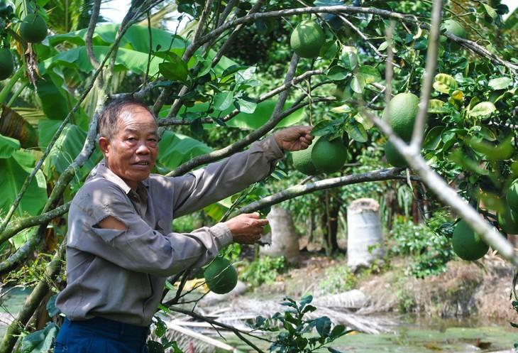 Ba Liêm, un membre du Parti dévoué  - ảnh 1