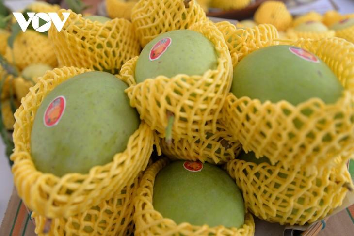 Pour mieux exporter les mangues vietnamiennes - ảnh 1