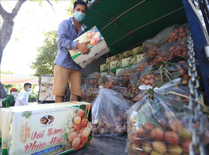 Relancer la production et les activités commerciales dans les localités - ảnh 1