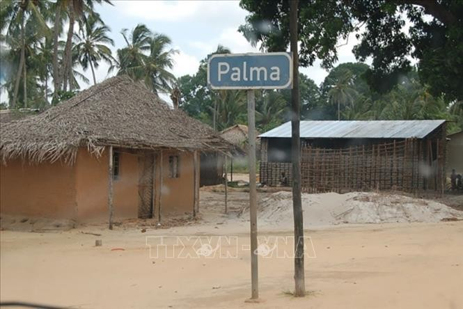 No Vietnamese citizen harmed in violence in Mozambique  - ảnh 1