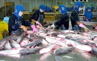 Forum on Vietnam catfish exports to EU opens in Brussels - ảnh 1