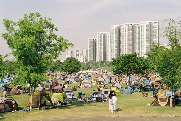Tour around RoK's Hangang River - ảnh 4