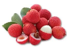Vietnamese fresh lychee to Japan sold out in 24 hours - ảnh 1