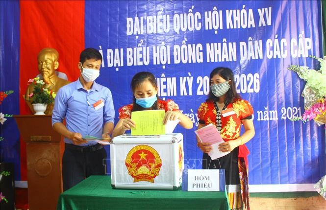 Elections offer opportunity for Vietnamese to raise voices over key matters: Australian expert - ảnh 1