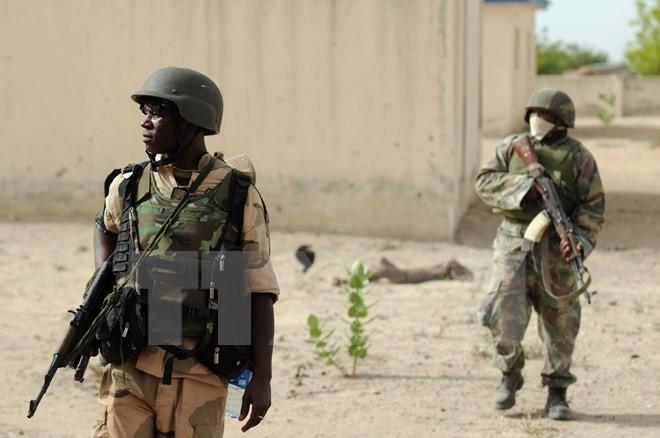 Nigeria nimmt einige wichtige Kämpfer von Boko Haram fest - ảnh 1
