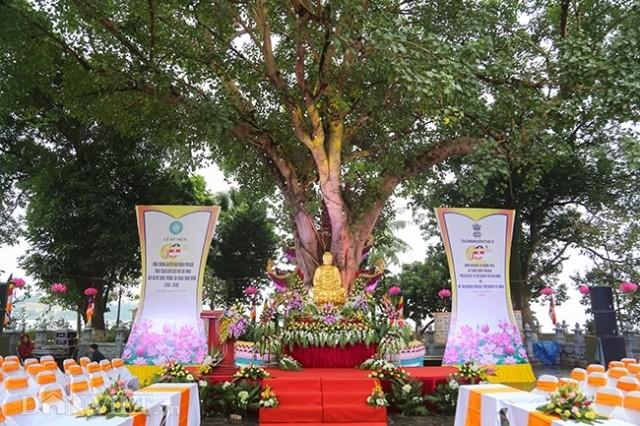 Der Buddhabaum in der Pagode Tran Quoc ist das Symbol für die Freundschaft zwischen Vietnam und Indien - ảnh 1
