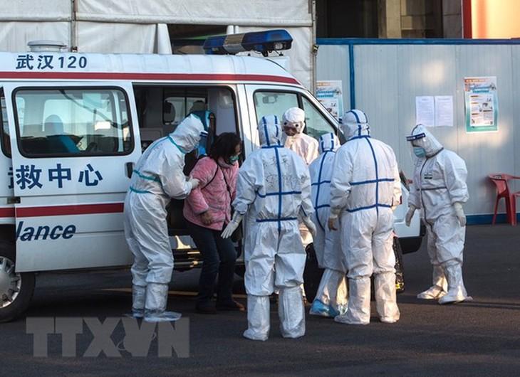 Die Welt ist immer noch unsicher vor Covid-19-Epidemie - ảnh 1