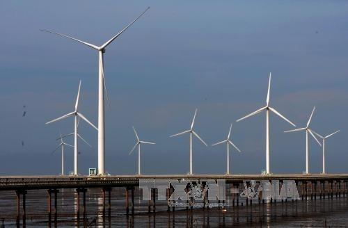 Dänemark und Vietnam diskutieren über Offshore-Windenergie in Vietnam - ảnh 1