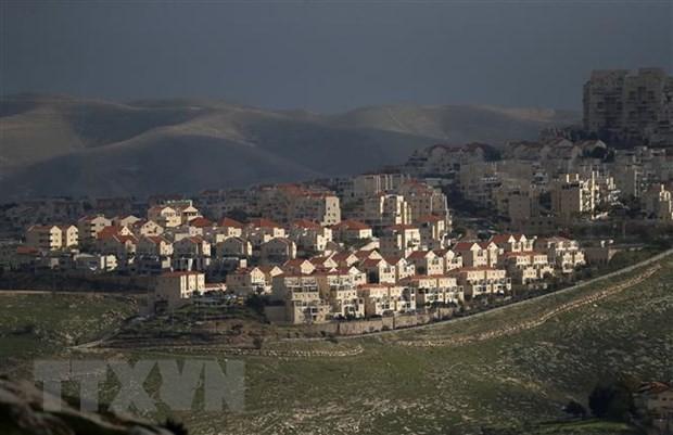 Palästina: Die USA sind kein Vermittler beim Konflikt zwischen Israel und Palästina - ảnh 1
