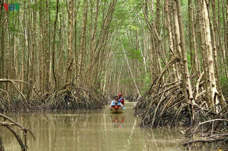 Ca Mau startet den Wettbewerb für Tourismus-Fotos - ảnh 1