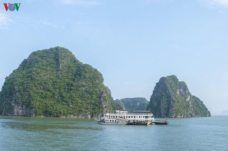 US-Magazin Insider stellt Ha Long-Bucht in Vietnam vor - ảnh 1
