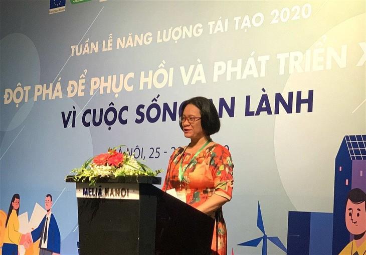 Die vietnamesische Woche der erneuerbaren Energien 2020 fördert die Entwicklung - ảnh 1