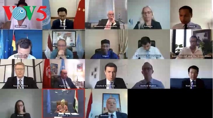 Vietnam und UN-Sicherheitsrat: Vietnam begrüßt die Fortschritte im Irak - ảnh 1