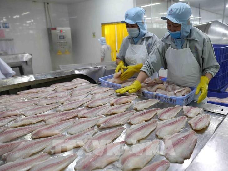 Prognose für das positive Wachstum der Fischerei-Branche im Jahr 2021 - ảnh 1