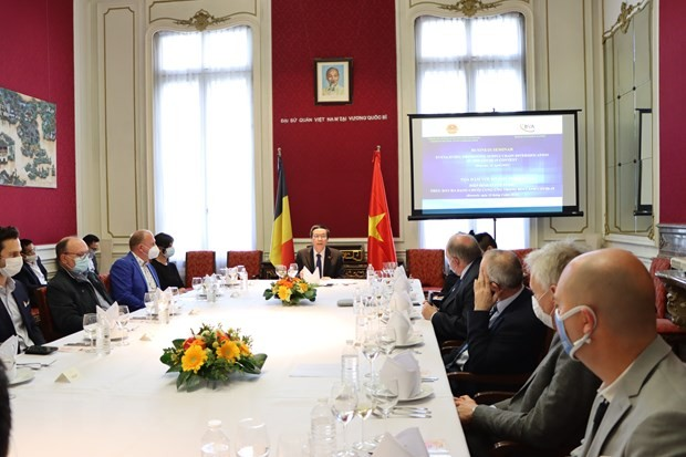 Belgische Unternehmen wollen ihre Investition in Vietnam verstärken - ảnh 1