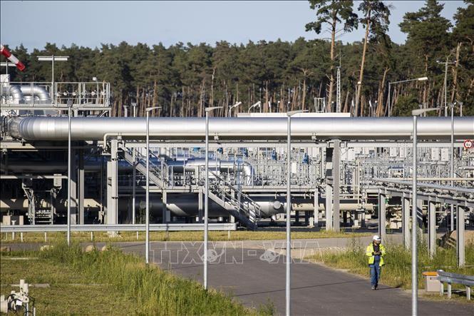 USA und Deutschland streiten über Pipeline Nord Stream 2 - ảnh 1