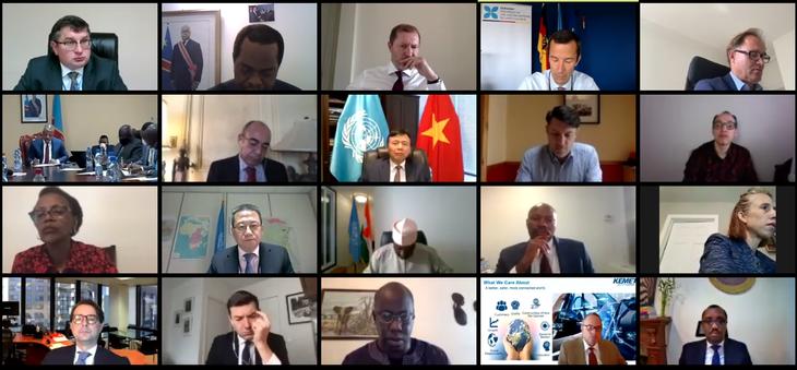 Conseil de sécurité de l'ONU: visioconférence sur l'exploitation illégale des Grands lacs en Afrique - ảnh 1