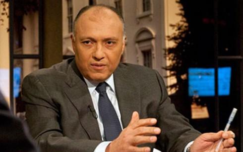 Египет назвал условия для решения катарского дипломатического кризиса - ảnh 1