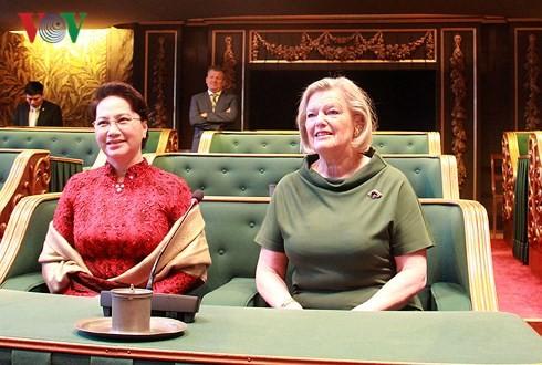Нгуен Тхи Ким Нган провела переговоры с председателем Сената Королевства Нидерландов - ảnh 1