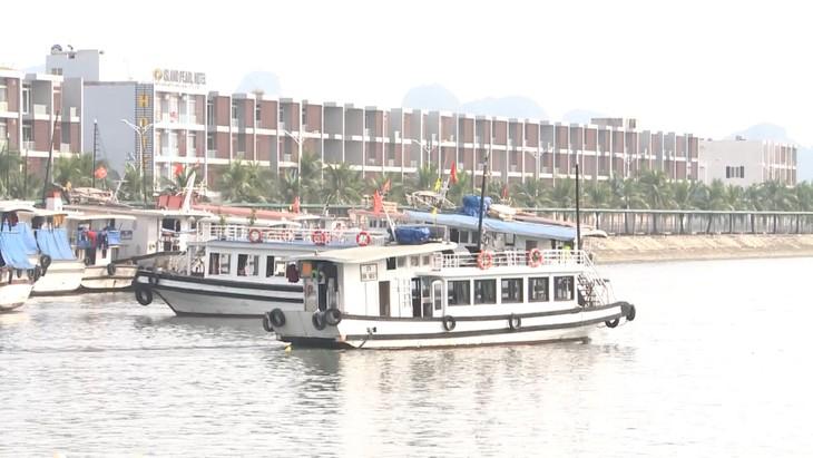 Модель «круизное судно для индивидуальных туристов» в заливе Халонг - ảnh 1