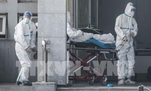 """Во многих китайских провинциях уровень экстренного реагирования из-за коронавируса повышен от """"серьезного"""" до """"наивысшего"""" - ảnh 1"""