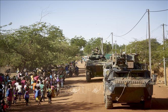 Франция направит в Африку дополнительно 600 военнослужащих - ảnh 1