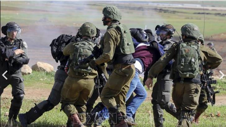 Израиль направляет дополнительные боевые соединения на Западный берег реки Иордан - ảnh 1