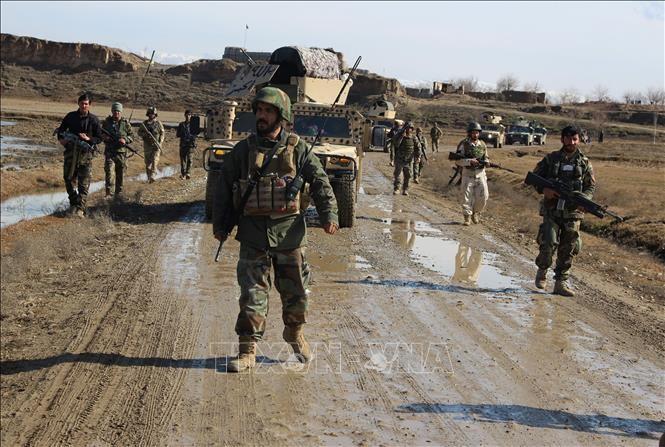 Ещё один лидер Талибана в Пакистане был убит в Афганистане - ảnh 1