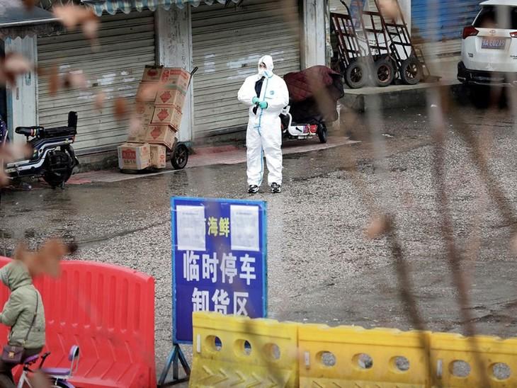 Китайская академия наук: источником коронавируса был не рынок морепродуктов в Ухане - ảnh 1