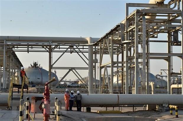 Россия и Саудовская Аравия привержены стабилизации мирового рынка нефти - ảnh 1