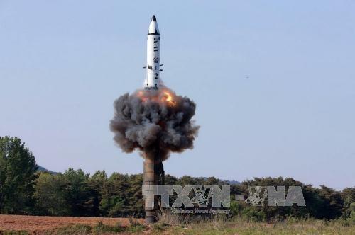 SIPRI: Арсеналы ядерного оружия в мире уменьшаются - ảnh 1