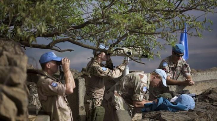 Совбез ООН рассматривает продление мандата наблюдателей на Голанских высотах - ảnh 1