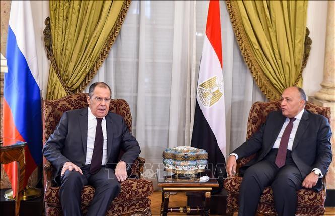 Главы МИД РФ и Египта обсудили ситуацию на Ближнем Востоке и в Северной Африке - ảnh 1