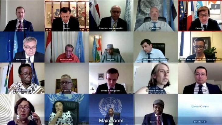 Совбез ООН обсудил вызовы безопасности на востоке Демократической Республики Конго - ảnh 1