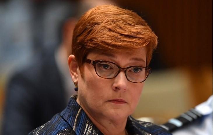 Австралия озабочена принятием Китаем Закона о нацбезопасности Гонконга - ảnh 1