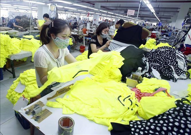 Вьетнам имеет большие возможности для развития текстильно-швейной промышленности - ảnh 1