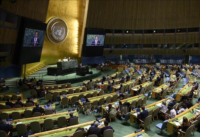 Председатель 75-й сессии ГА ООН обсудил с главой МИД РФ направления действий - ảnh 1