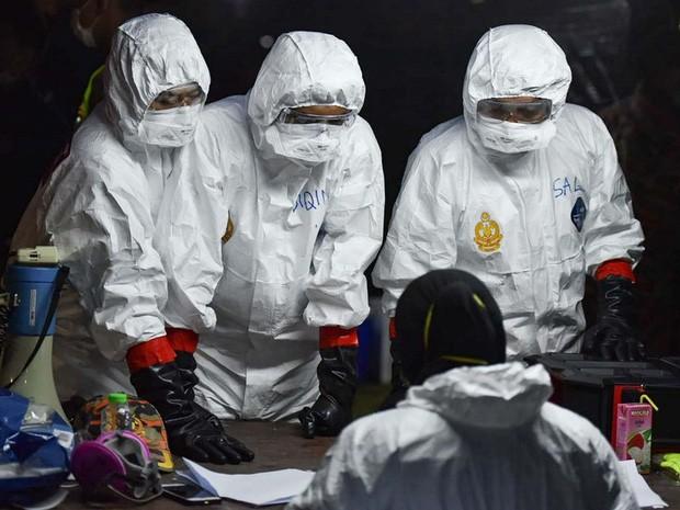 В мире коронавирусом заразились более 19 млн человек - ảnh 1