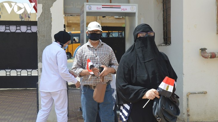В Египте прошли выборы в восстановленный Сенат - ảnh 1