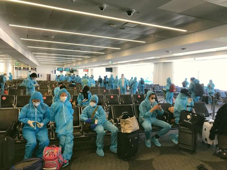 340 граждан Вьетнама были доставлены из Австралии на Родину - ảnh 1