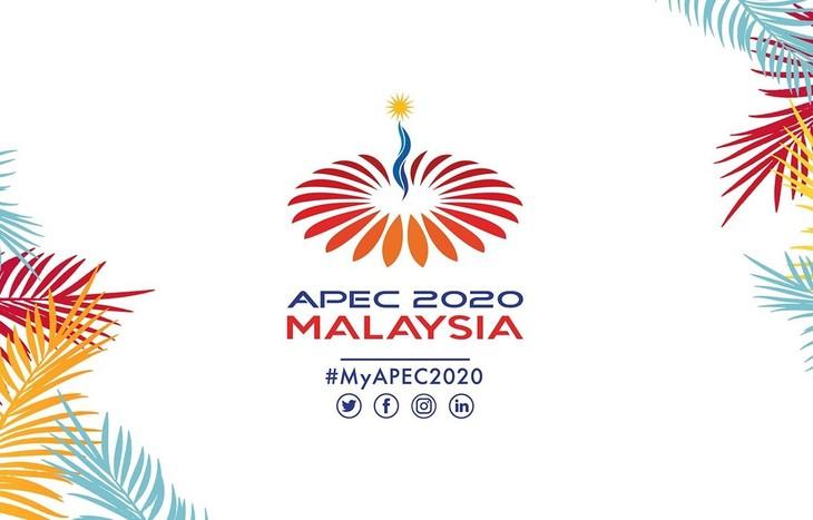 Саммит АТЭС 2020 пройдет в  декабре в режиме онлайн - ảnh 1