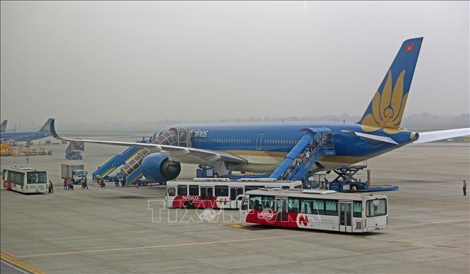 Около 280 вьетнамских граждан вывезены из Европы на Родину - ảnh 1