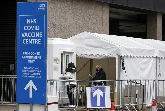 В мире более 2,6 млн. человек погибли от коронавируса - ảnh 1
