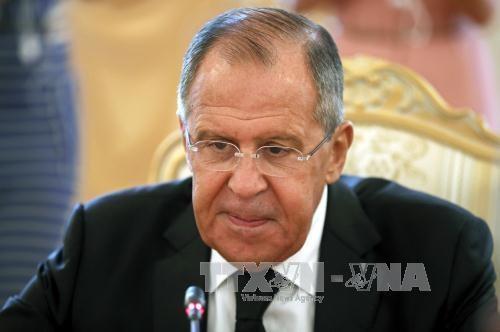 Mesir dan Rusia ingin mengadakan kembali aktivitas penerbangan - ảnh 1