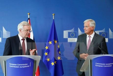 Masalah Brexit: Uni Eropa dan Inggris masih ada banyak perbedaan pandangan dalam perundingan - ảnh 1